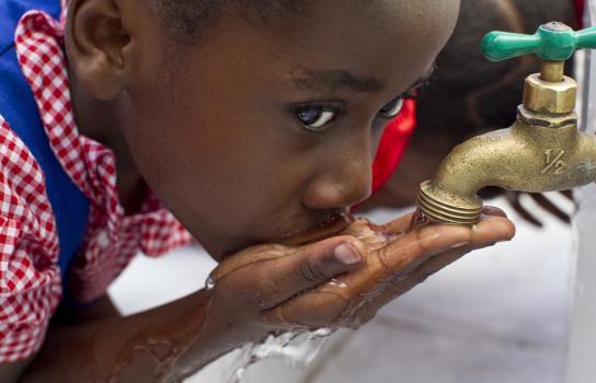 Top Rating da Charity Navigator alla Fondazione Rotary per l'11º anno consecutivo